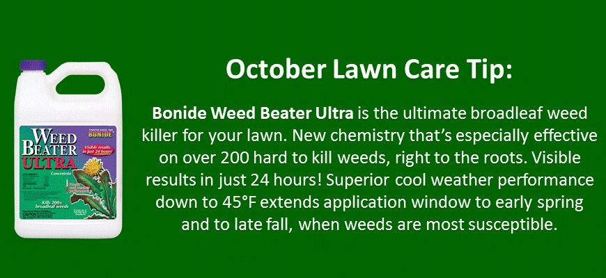 october lawn care tip