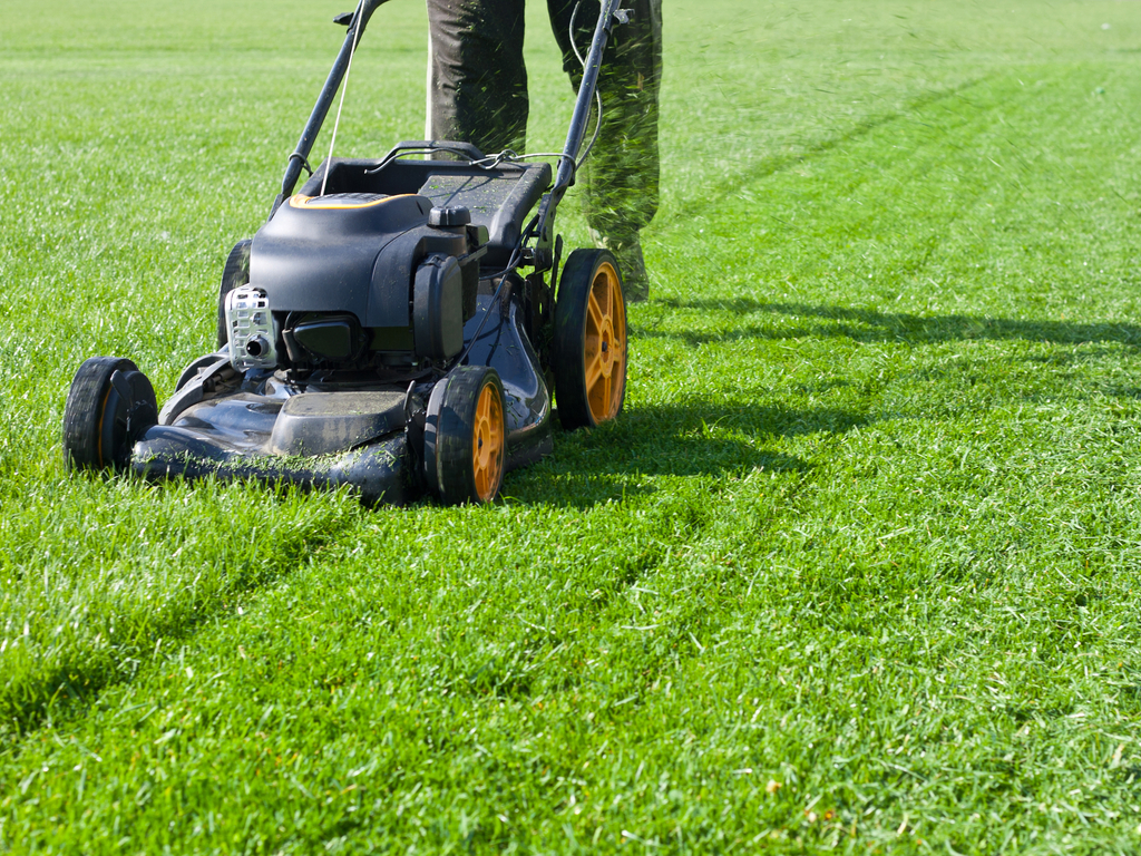 KMGC Lawn with mower
